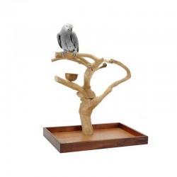 Java stander til fugle