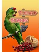 Papegøje aktivering og papegøje fouragering